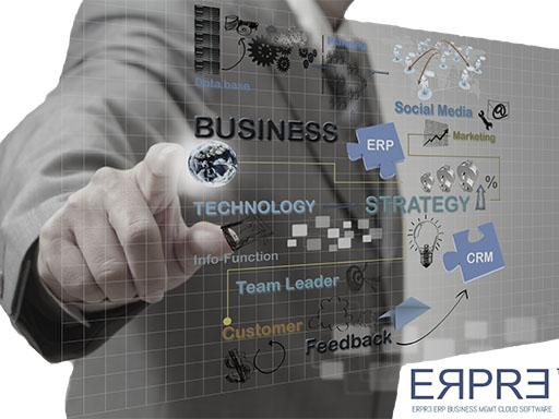 ERP Software Cloud R3